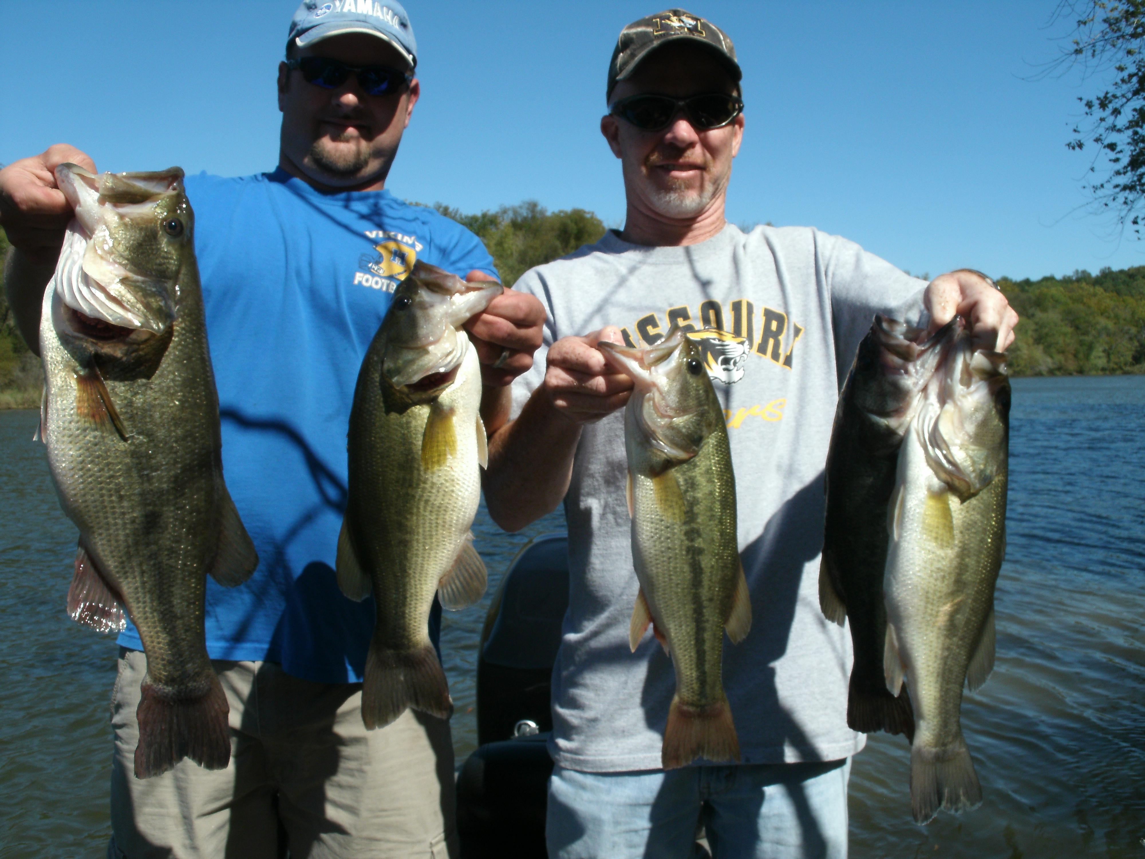 Seven lakes in two weeks alabama s pickwick lake for big for Pickwick lake fishing report